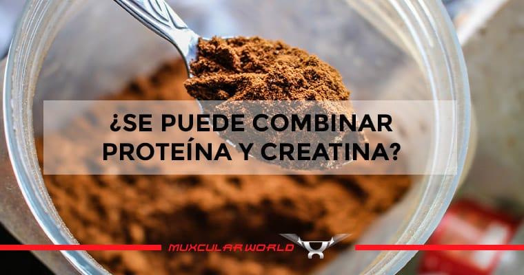 proteina-y-creatina