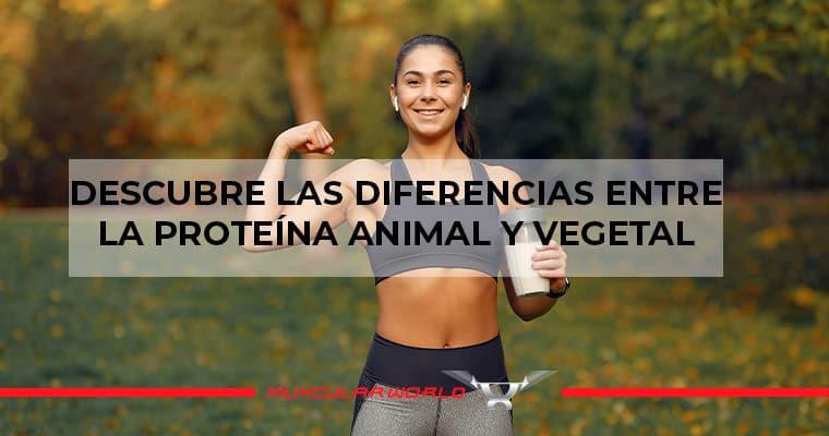 proteina-animal-y-vegetal