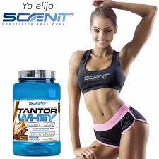 tantor whey scenit